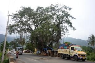 Tamil Nadu/Kerala Border
