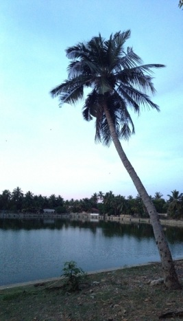 Ariya Kulam (Water Tank)
